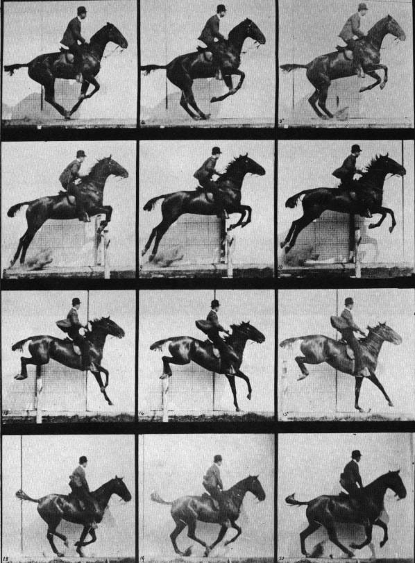 Muybridge Horse Jumping